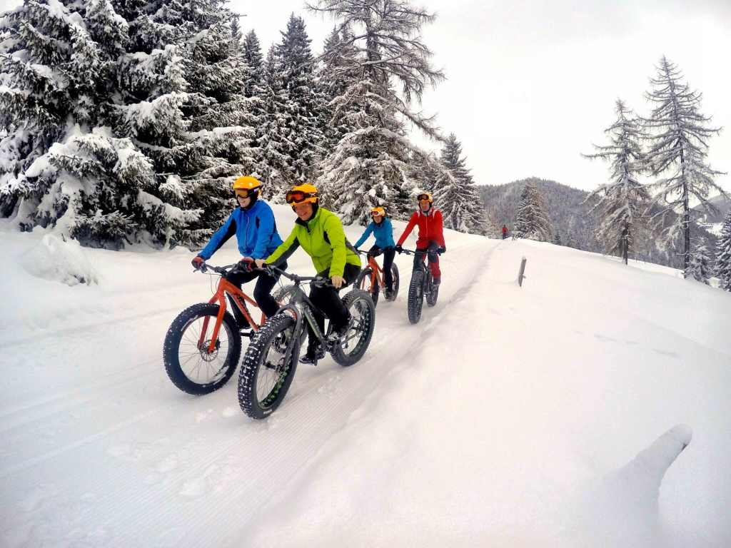 guided Fatbike tours on the plateau Ramsau am Dachstein